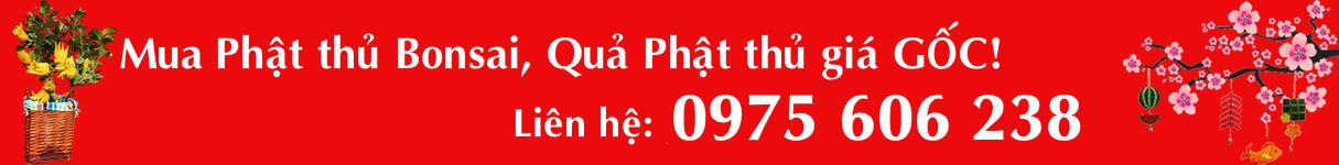 Banner Tet